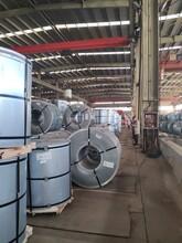 嘉兴锌铝镁彩钢板厂家图片