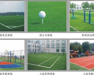 深圳市合眾體育用品有限公司