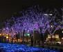 浙江宁波新春展览设备,灯光展设备出租,时光隧道出租