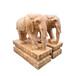供應石雕大象晚霞紅石雕大象中式庭院風水石象