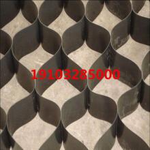 土工格室護坡防滑土工格室路基加固土工格室直銷廠家圖片