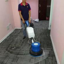 南宁武鸣区地毯清洁公司图片