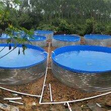 大型户外高密度圆形镀锌板帆布鱼池可折叠支架养殖定做尺寸