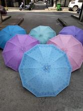 黄山雨伞回收图片