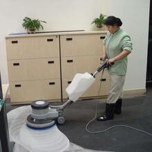 虎丘区地毯清洗服务图片
