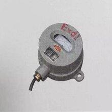 DYB-100,DYB-150,DYB-200,DYB-700矿用隔爆型电压表图片