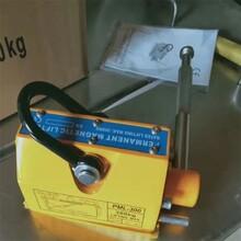潍坊永磁起重器图片