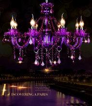 广西紫色灯生产图片