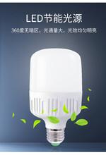 广东球泡灯