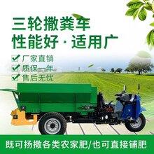 液压自走式三轮撒粪车有机肥撒肥机大棚用撒肥车图片