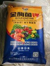 山東省濟寧市廠家直銷金酶菌鉀沖施型菌劑圖片