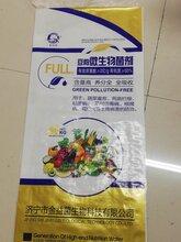 豆粕微生物菌劑圖片