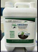 厂家直销价格生根壮苗原菌液图片