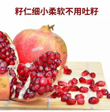 重庆大青皮石榴苗零售图片