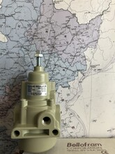 美国MarshBellofram过滤器T50960-069-000