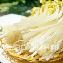 北京可靠蔬菜清洗機制作精良圖片