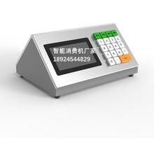 二次开发缴费机智能交费机食堂IC卡收款机厂家图片