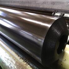 HDPE防水板、高密度聚乙烯吊带防水板,适用于隧道等工程图片