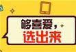 專業第三方微信投票平臺創建投票用票選平臺