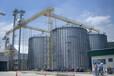港口中轉倉大儲量常用糧食鋼板倉