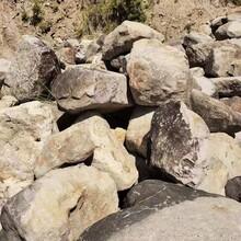 杭州園林風景石自然石水沖石鵝卵石駁岸石