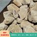 杭州天然景觀石天然黃石桐廬石假山石駁岸石