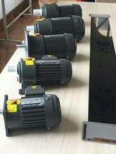 聊城供应城邦齿轮减速机皮带输送机专用马达图片