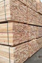珠海松木木板供应厂家图片