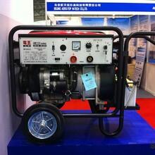 渭南电王发电电焊机代理图片