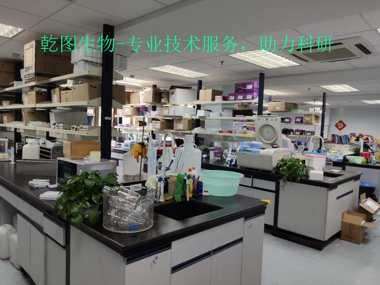 QTE15219 人透明质酸蛋白聚糖连结蛋白1(HAPLN1)ELISA试剂盒试剂盒说明书