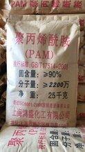 上海鸿盛聚丙烯酰胺PAM2200万分子量阴离子水处理絮凝剂图片