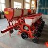 厂家直接销售玉米棒子播种机自动施肥