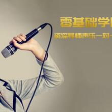 廣州黃埔區成人器樂培訓圖片