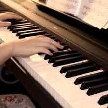 從化區成人鋼琴培訓圖片