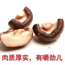 批发干香菇饭店专用干香菇厂家货源干度好图片