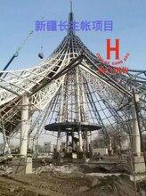 制作加工各种空间钢结构管桁架及造型管桁架结构图片