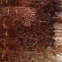 瀍河区废紫铜回收价格图片