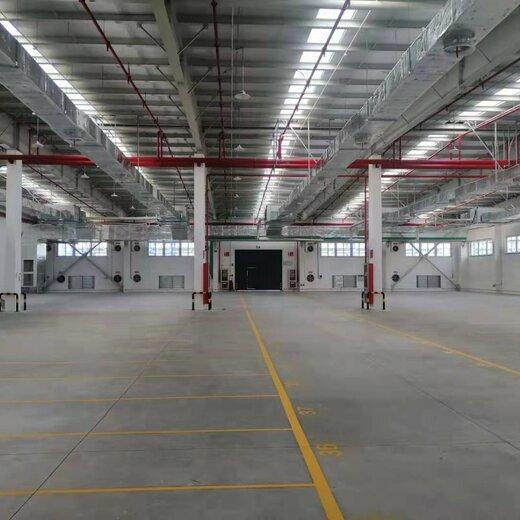 上海甲類丙1類倉庫出租出口裝箱