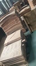 茂名枫木面板批发价格图片