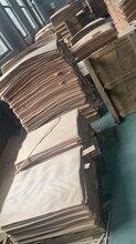 茂名楓木面板批發價格圖片