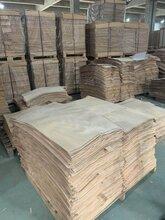 貴港樺木板材廠家圖片