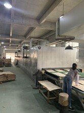 溫州樺木木皮板材圖片