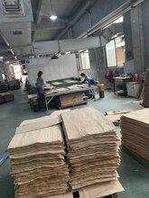 衢州桦木板材批发图片