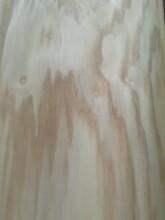 亳州水曲柳板材生产厂家图片