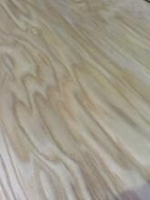 六安實木水曲柳板材廠家圖片
