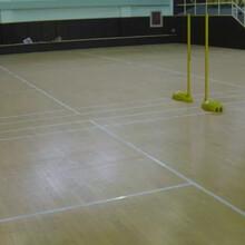 天津篮球馆木地板质优价廉图片