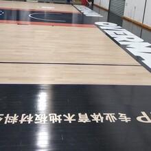 深圳羽毛球木地板价格实惠图片
