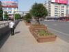 寧夏塑木花箱市場價格,花盆