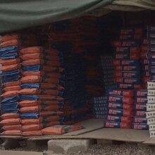 南山建筑水泥市场价格图片