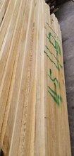德阳椿木烘干板材供应商图片